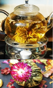 Tea Flower from Mae Taeng ancient semi-wild tea tree forest, north Thailand