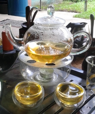 Artisan High Mountain Bi Luo Chun served in glass teapot with glass cups