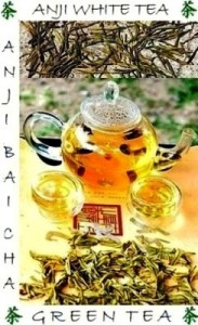 Semi-wild (biodiversity) organic Anji BaiCha Green Tea / Anji White Tea