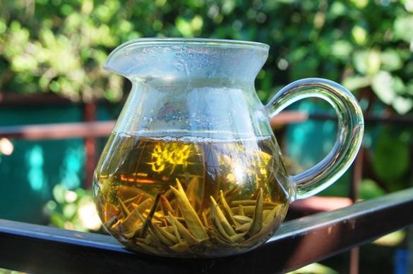 Moonlight Buds White Tea in my garden