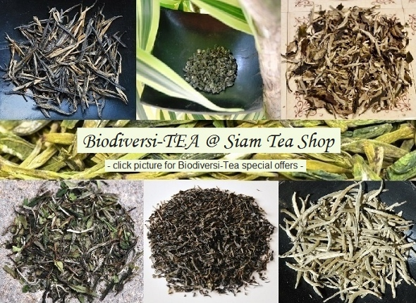 Top organic Teas from biodiverse cultivation or wild collection