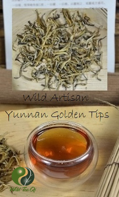Golden Tips from ancient wild tea trees in Yunnan growing at altitudes beyond 2000 meters