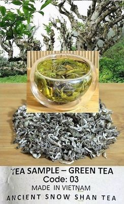 "Ancient Artisan Snow Shan Green Tea from ancient Thuyet Shan (""Snow High Mountain"") tea trees in Ha Giang Province, Vietnamüner Tee Produktfoto (244 x 400)"