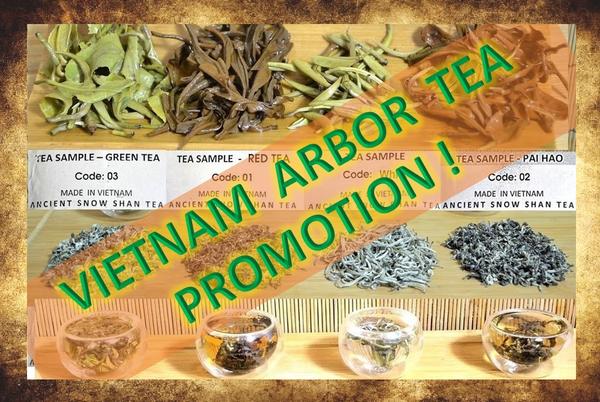 Vietnam Arbor Tee Promotion