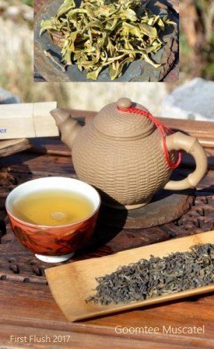 Goomtee Muscatel First Flush 2017 from Goomtee Tea Estate, Darjeeling, India