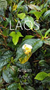 Laos Artisan Arbor Teas