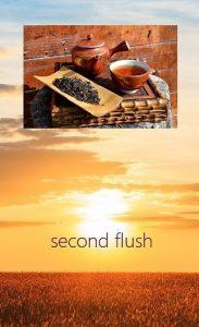 Darjeeling Second Flushes - Teas from Darjeeling's summer picking